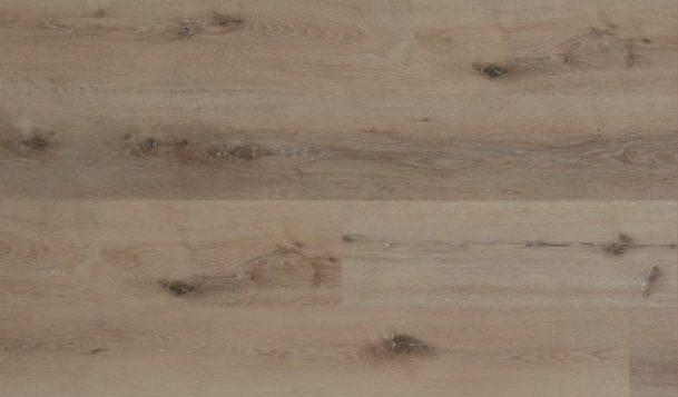 Sandy Oak 004