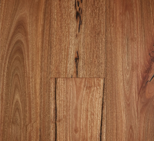 Spotted-Gum-Rustic